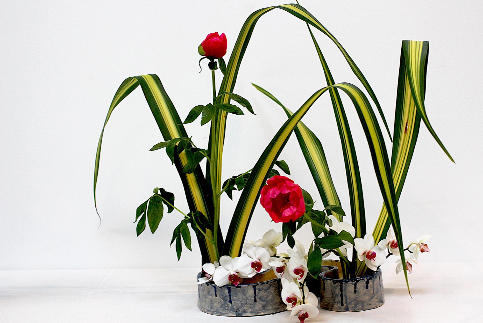 ikebana manuel m. v.